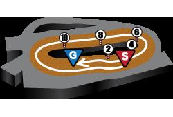 マーチステークスのコース情報の画像