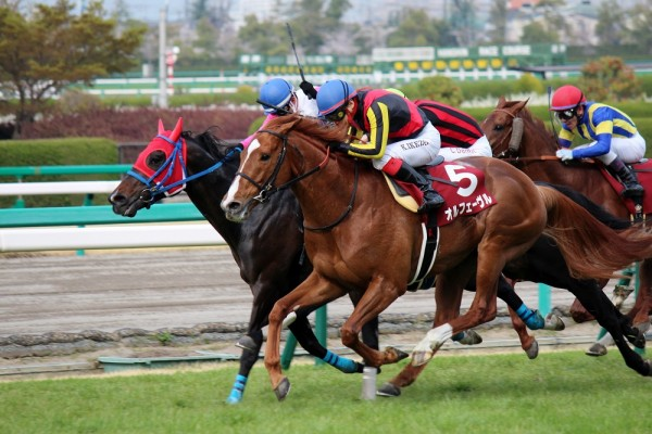 産経大阪杯2015年の画像