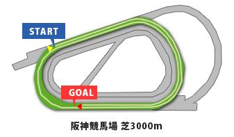 阪神大賞典2015年コース