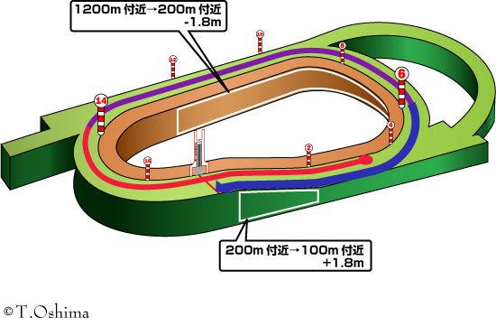 産経大阪杯のコース